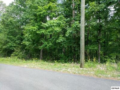 Residential Lots & Land For Sale: Lot 3 Scenic Woods Way