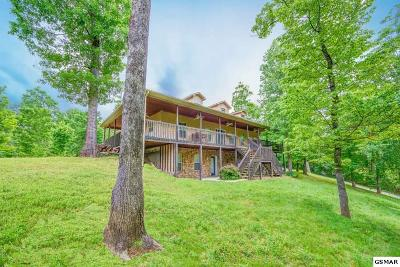 Pigeon Forge Single Family Home For Sale: 306 White Cap Lane