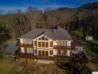 Sevierville Single Family Home For Sale: 1628 McCarter Hollow Road