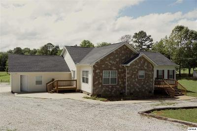 Strawberry Plains Single Family Home For Sale: 795 Bruner Rd
