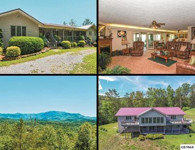 Sevierville Single Family Home For Sale: 3206 Hickey Road