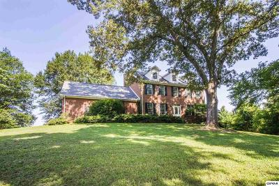 Strawberry Plains Single Family Home For Sale: 705 Beard Rd