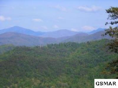 Townsend Residential Lots & Land For Sale: B-P Mountain Avenue