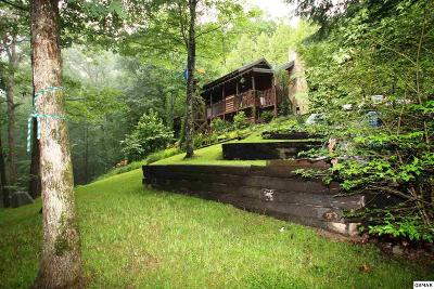 Sevier County Single Family Home For Sale: 4175 Lumber Jack Way