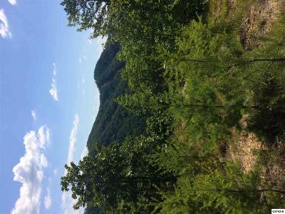 Pigeon Forge Residential Lots & Land For Sale: Lot #6 Eagles Point Way