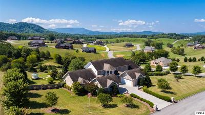 Sevierville Single Family Home For Sale: 1424 Robert Ridge Road