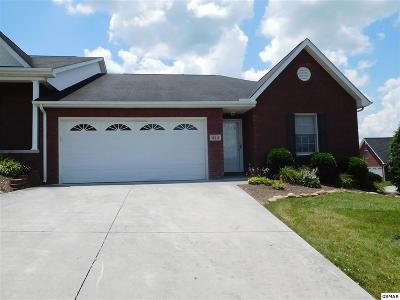 Knoxville Single Family Home For Sale: 219 Butterfly Way