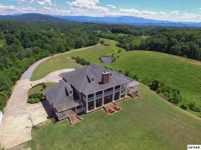 Sevierville Single Family Home For Sale: 3050 Sims Rd