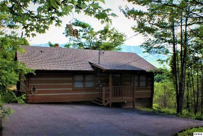 Gatlinburg Single Family Home For Sale: 1017 Fox Tail Trail