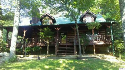 Pigeon Forge Single Family Home For Sale: 703/705 Boone Acres Way