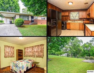 Knoxville Single Family Home For Sale: 3041 Sanland Ave