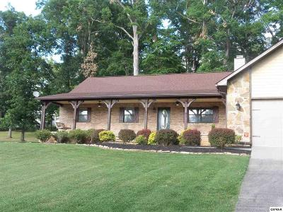 Kodak Single Family Home For Sale: 3121 Autumn Oaks Circle