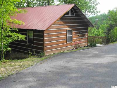 Sevierville Single Family Home For Sale: 1438 A.m. King Way