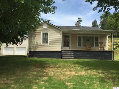 Dandridge Single Family Home For Sale: 3240 Old Highway 411