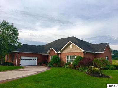 Sevierville Single Family Home For Sale: 1912 Pattons Way