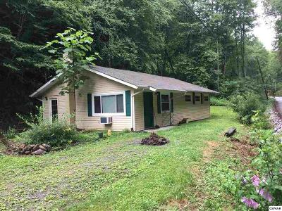 Gatlinburg Single Family Home For Sale: 1054 Cole Lane