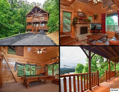 Sevierville Single Family Home For Sale: 3125 Lakeview Lodge Drive