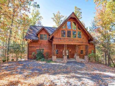 Gatlinburg Single Family Home For Sale: 828 Pinnacle Vista Rd