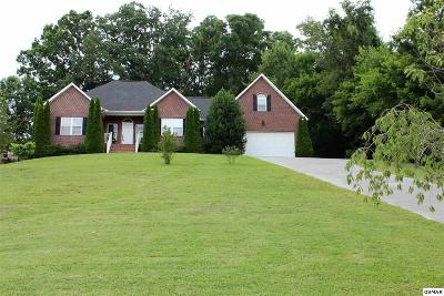 Seymour Single Family Home For Sale: 826 Reagan View Ln