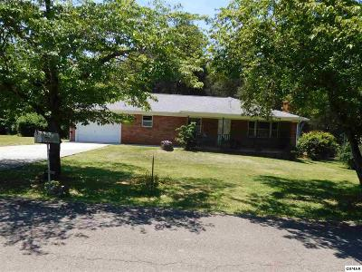 Strawberry Plains Single Family Home For Sale: 327 Northview Drive