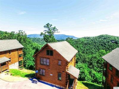 Sevierville Single Family Home For Sale: 2835 White Oak Ridge Lane