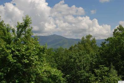 Gatlinburg TN Residential Lots & Land Sold: $35,000