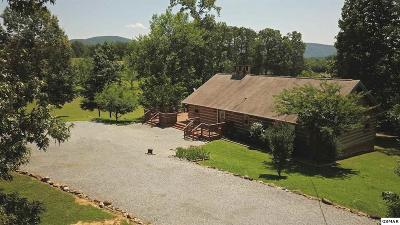 Sevierville TN Single Family Home For Sale: $256,000