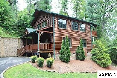 Gatlinburg Single Family Home For Sale: 650 Galinburg Falls Way