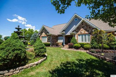 Sevierville Single Family Home For Sale: 2405 McCleary Rd