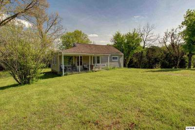 Strawberry Plains Single Family Home For Sale: 9016 Curtis Road