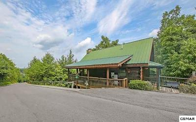 Pigeon Forge Single Family Home For Sale: 3233 Choctaw Hill
