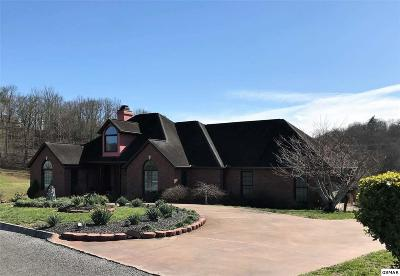 Sevierville Single Family Home For Sale: 225 Bobwhite Trail