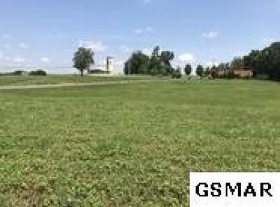 Sevierville Residential Lots & Land For Sale: Parc. 201.01 Douglas Dam Road