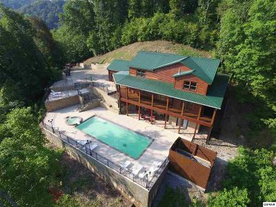 Sevierville Single Family Home For Sale: Bob Hollow Rd.