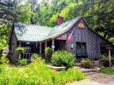 Gatlinburg Single Family Home For Sale: 725 Buckhorn Road