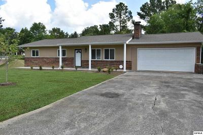 Sevierville Single Family Home For Sale: 311 South Blvd