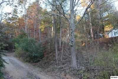 Pigeon Forge Residential Lots & Land For Sale: Lot 1 Cedar Rd