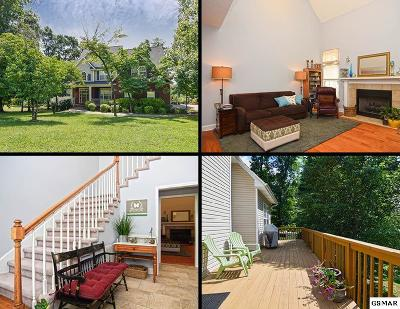 Sevierville Single Family Home For Sale: 1537 Ellis Woods Loop