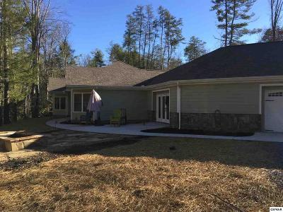 Sevierville Single Family Home For Sale: 3375 Birds Creek Road