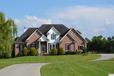 Seymour Single Family Home For Sale: 520 Jockey Club Drive
