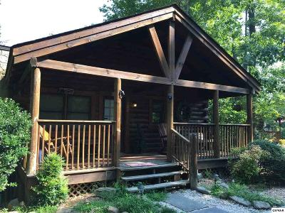 Pigeon Forge Single Family Home For Sale: 722 Nighthawk