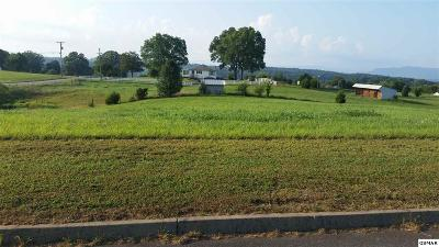 Kodak TN Residential Lots & Land For Sale: $29,900