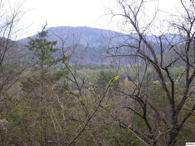 Townsend Residential Lots & Land For Sale: 220 Fox Hollow