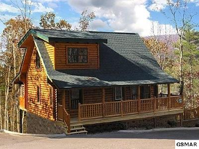 Pigeon Forge Single Family Home For Sale: 2010 Bear Creek