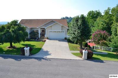 Sevierville Single Family Home For Sale: 210 Lexington Pl