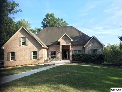 Kodak Single Family Home For Sale: 4311 Douglas Dam Road