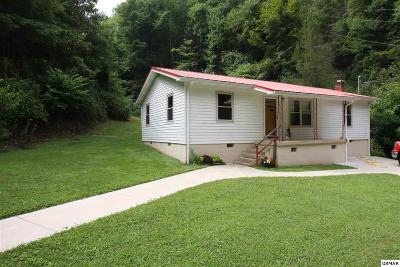 Sevierville Single Family Home For Sale: 3806 Knight Hollow Rd