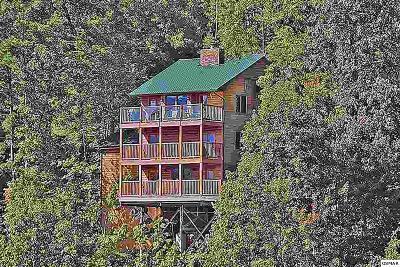 Gatlinburg Single Family Home For Sale: 1503 Zermatt Drive