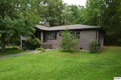 Single Family Home For Sale: 833 Holston Drive