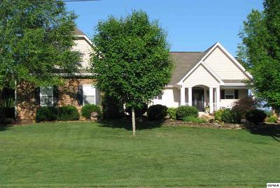 Dandridge TN Single Family Home For Sale: $689,900